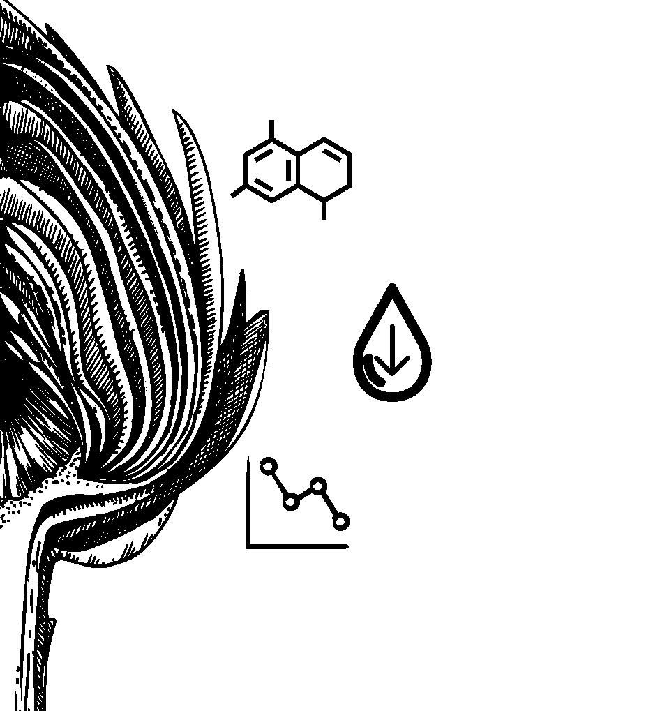 Blood sugar balancing