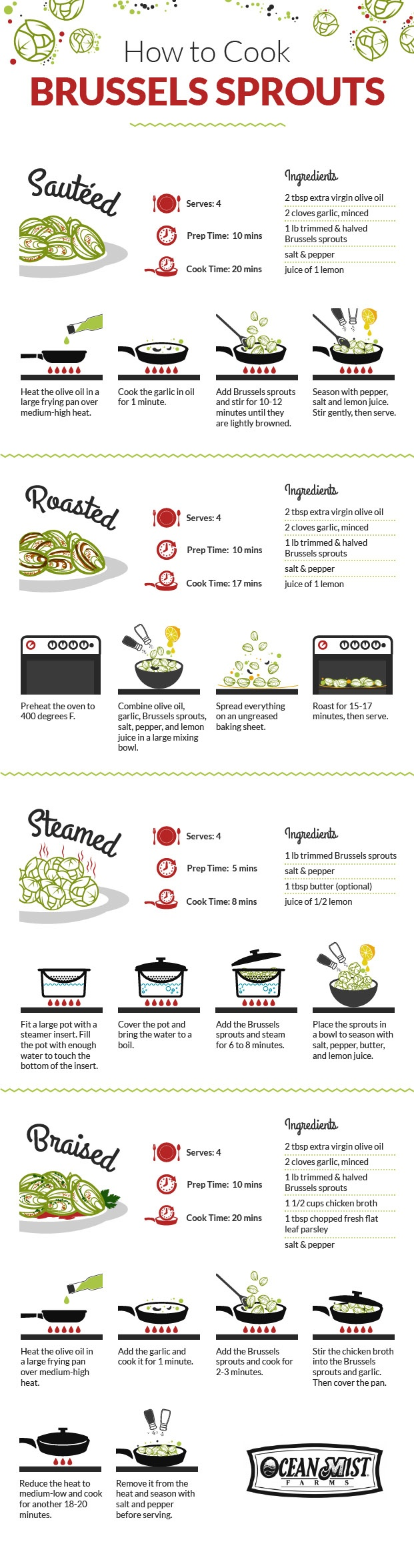 How to Cook Brussels Sprouts Infographic