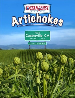 locally grown artichokes