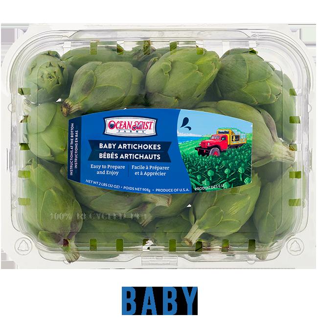 BabyArtichokeAdd-2