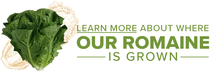 Learn more about where our romaine is grown
