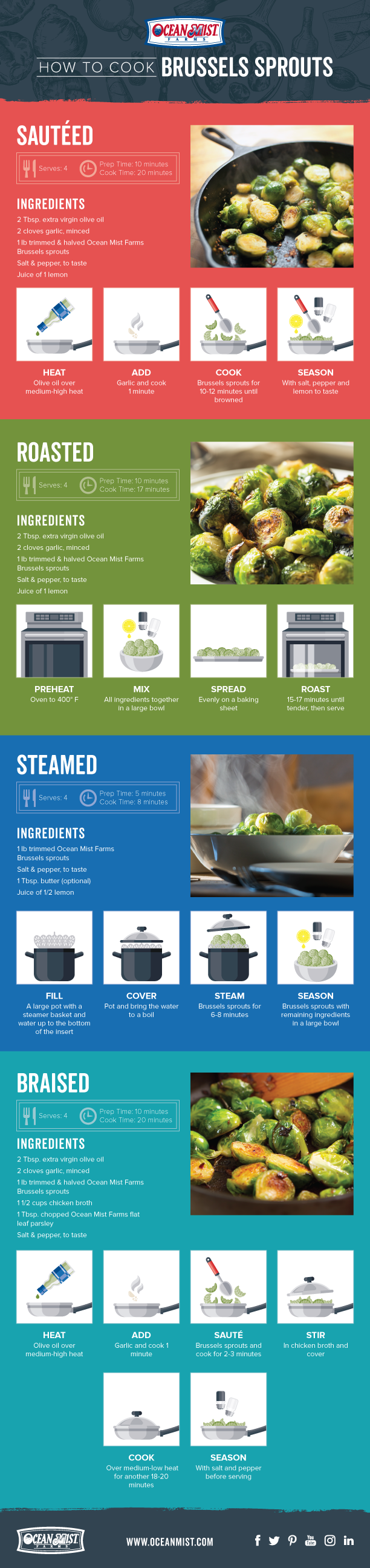 How to Cook Brussels Sprouts Infographic Image