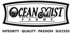 Ocean-Mist-Values-BW-PNG
