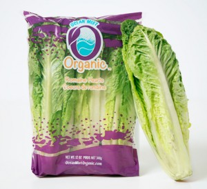 Organic-Romaine-Bag-&-1-head[2]