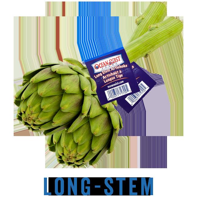 Ocean Mist long-stem artichokes