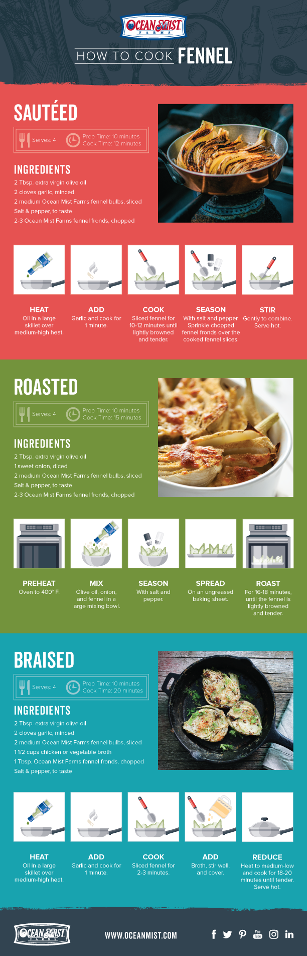 OM_How-to-Cook-Fennel_Infographic-1