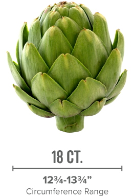 artichoke-lg-2-2