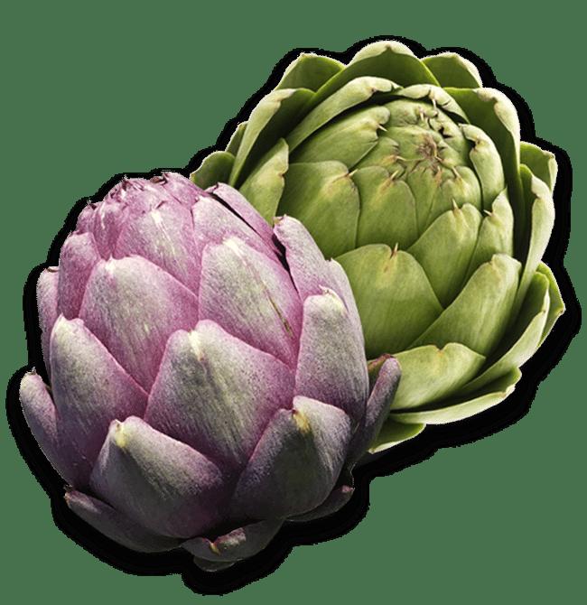 Purple and green artichokes collage