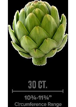 medium-sized artichoke