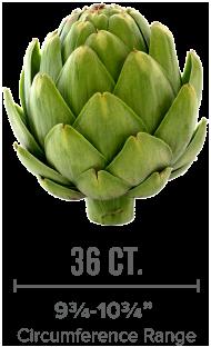 small artichoke