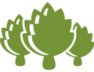 icon-three-artichokes