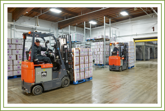 workers operating forklifts