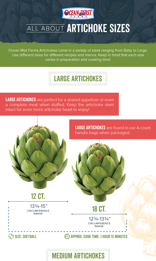 All About Artichokes Thumbnail