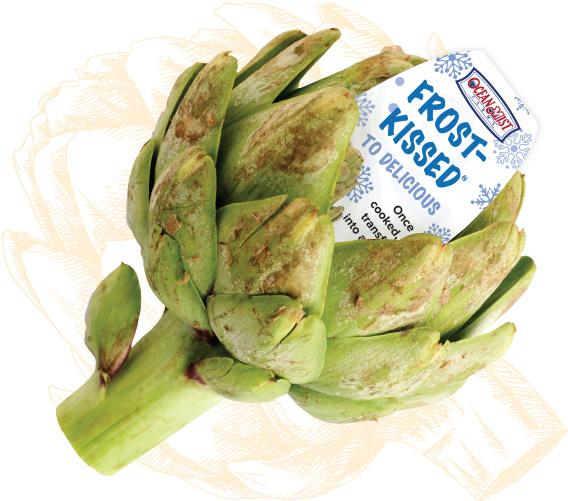 p-frost-kissed-artichokes-2